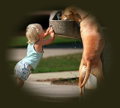 child and puppy at water fountain