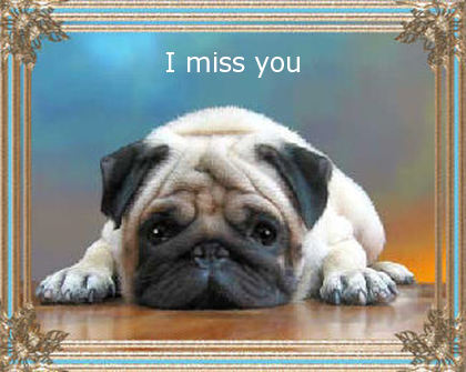 I miss you with image of very sad puppy here