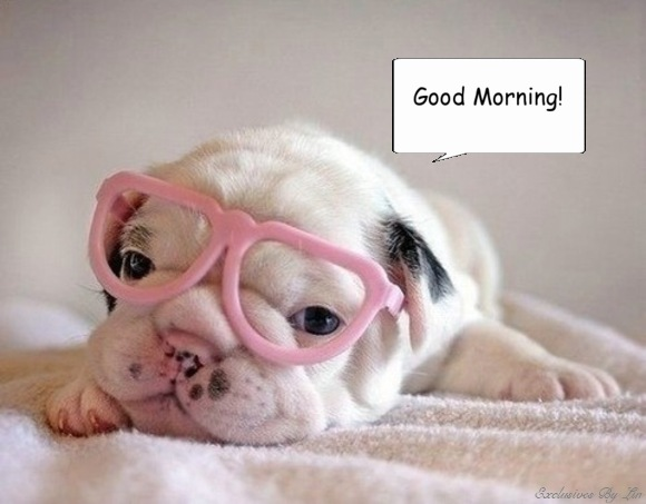 Good Morning with darling puppy image here